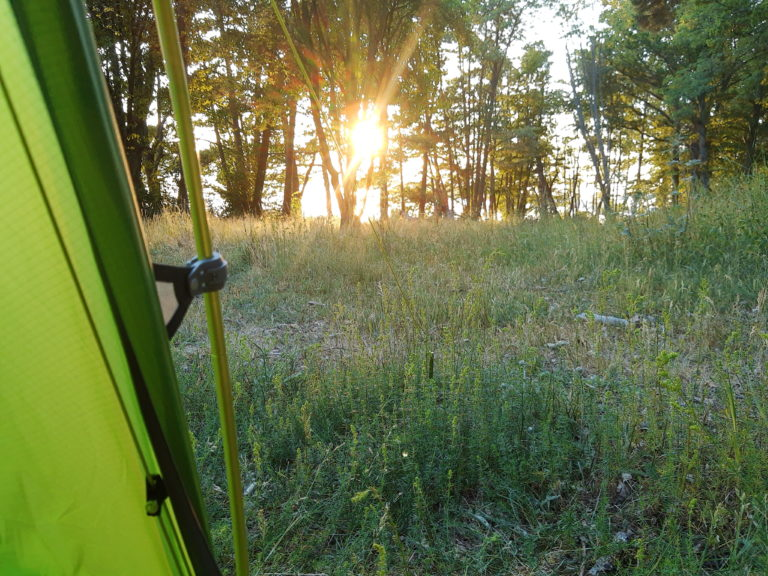 Peeking out from a tent, over a small grassfield, sun rising between trees
